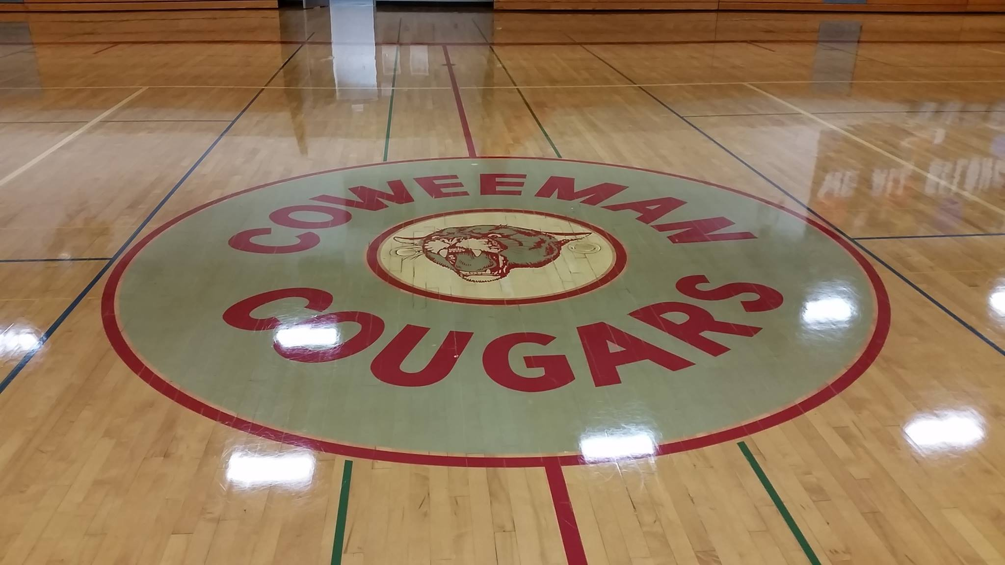 logo from the gym floor